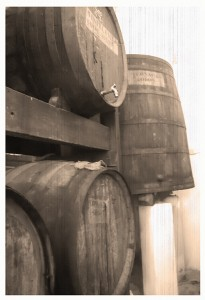 In these barrels rests one of the best Brandis of Spain since 1890.